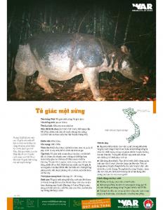 Tê giác một sừng