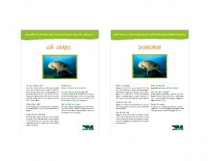 Dugong (cá Cúi, Bò Biển, Cá Nược)