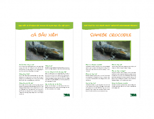 Cá sấu nước ngọt